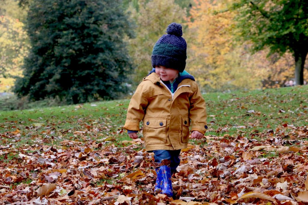 A toddler walks among fallen leaves with excitement on his face.